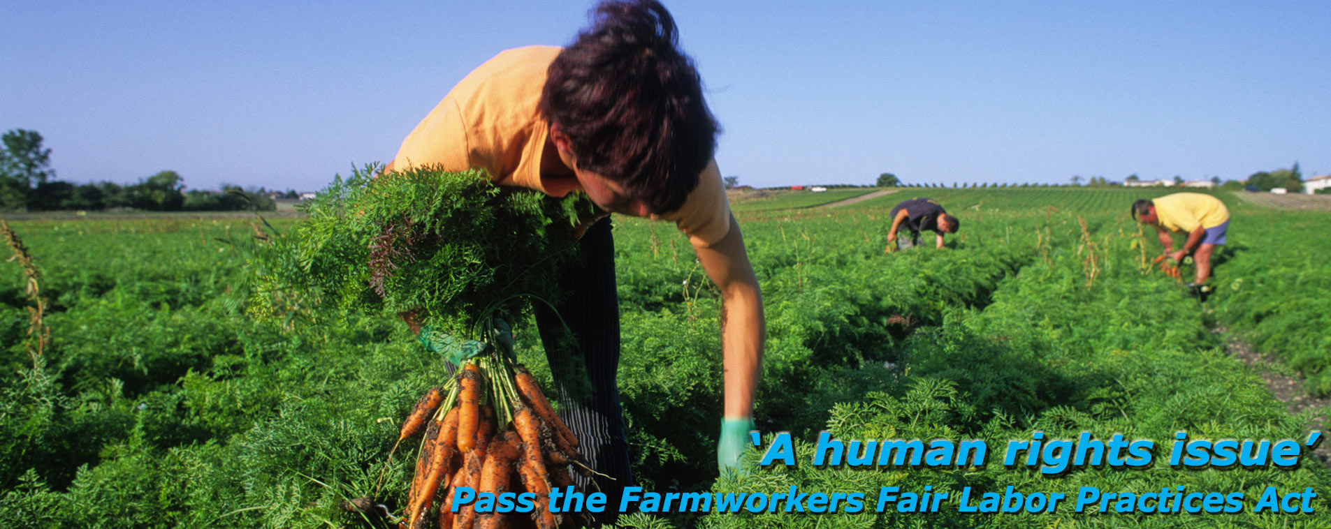 Farmworkers slider